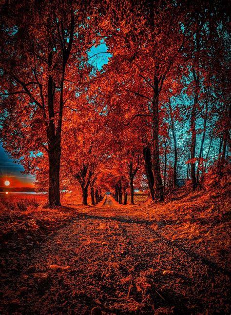 picsart cb edit background png picsart cb edit