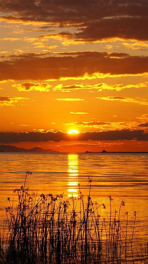 golden hour sunset iphone wallpaper iphone