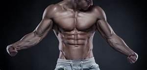 Programme Prise De Masse S U00e8che   Conseils Musculation Et Entrainement