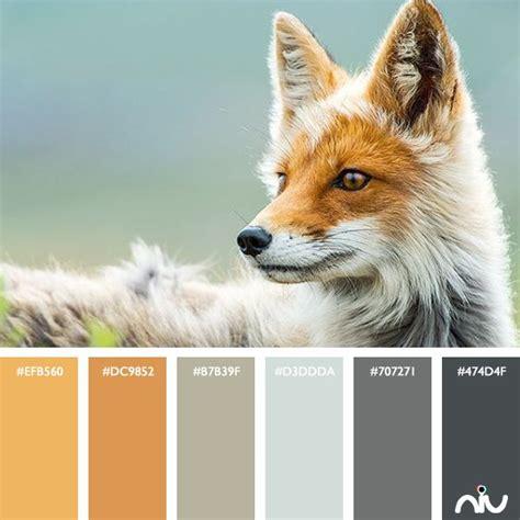 fox colors fox color palette color palettes niu in 2019 color