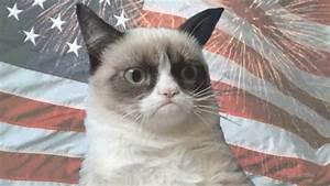 Grumpy Cat Fourth | MyConfinedSpace