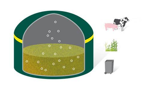 Wie Entsteht Biogas by Wie Entsteht Biogas Der Biogasprozess Im Detail