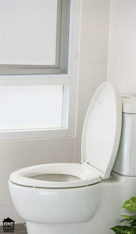 ways to unclog a toilet go chemical free unclog drains toilets naturally