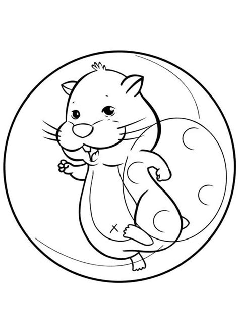 smiling hamster pet coloring page coloring sky