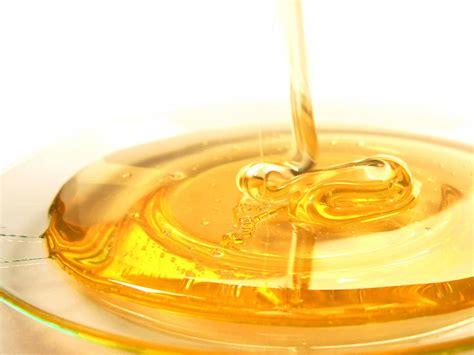 de geneeskracht van honing de betere wereld