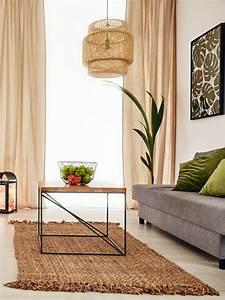 Zimmerpflanzen Pflege Tipps : zimmerpflanzen pflege und m glichkeiten ~ Lizthompson.info Haus und Dekorationen