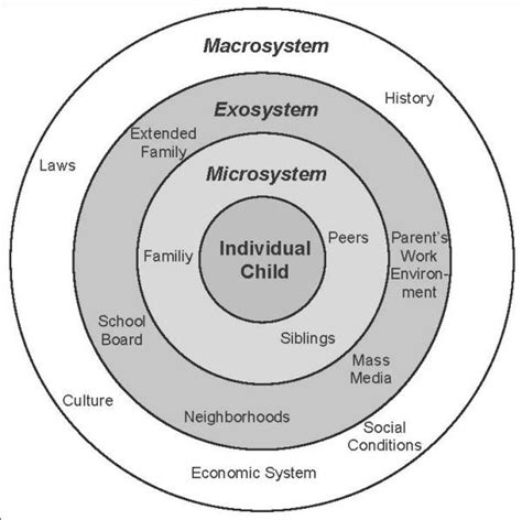 Bronfenbrenner Theory Essay by Ecological Systems Theory Essay Driverlayer Search Engine