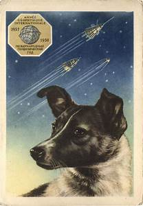 soviet space dogs who took giant leaps for mankind