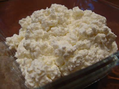 make your own cottage cheese make your own curd cottage cheese other great cheese