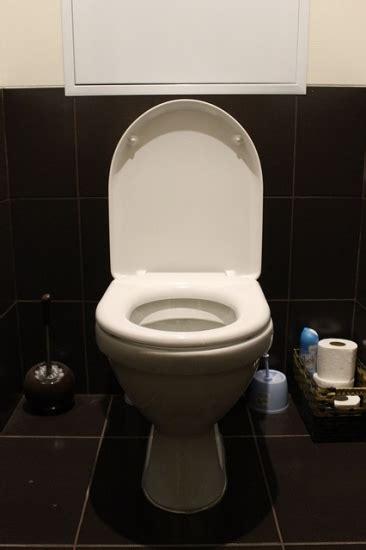 water  toilet bowl  jane
