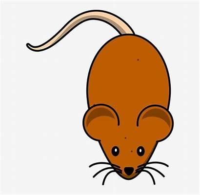 Mouse Cartoon Clipart Mice Brown Pet Pngio