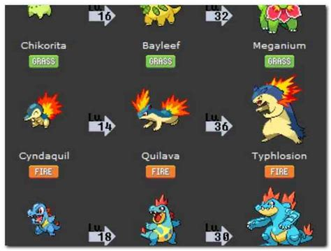 All Three Starters Pokemon Crystal   Online Pictures Reference