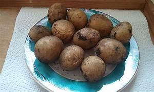 Pellkartoffeln In Mikrowelle : pellkartoffeln rucki zucki rezept mit bild von p ppi58 ~ Markanthonyermac.com Haus und Dekorationen