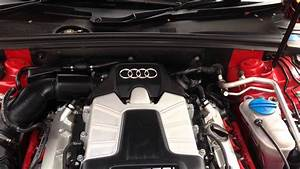 Audi S4 B8 Engine Rattle