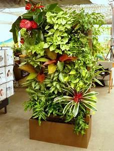10, Best, Plants, To, Grow, For, Vertical, Garden, U2013, The, Self