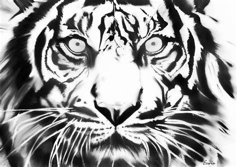 big cat drawing  erwin verhoeven