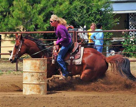 glue horseshoes horse soundhorse sound technologies