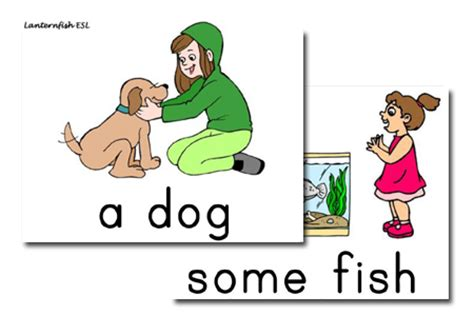 Pet Flashcards