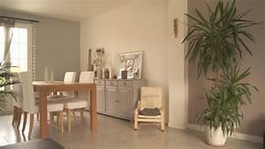 Peinture Salle A Manger : peinture salon salle a manger meilleures images d 39 inspiration pour votre design de maison ~ Dailycaller-alerts.com Idées de Décoration