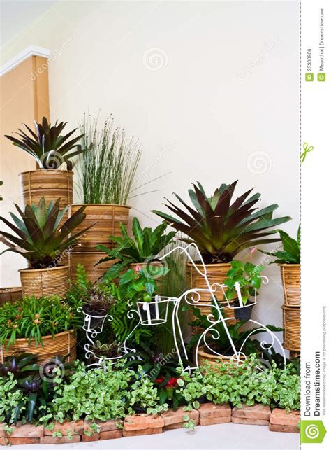garden room interior decoration indoor garden for room corner decoration stock photo