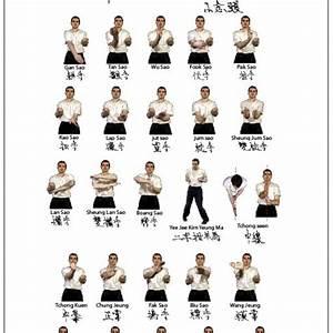 Best 25  Wing Chun Training Ideas On Pinterest