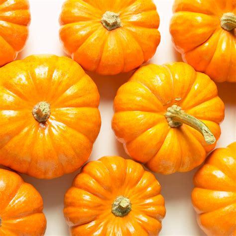 conservation des citrouilles et potirons citrouille potiron potimarron toute la cuisine d cuisine plurielles fr