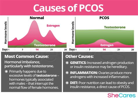 Pcos Polycystic Ovary Syndrome  Shecares. College Success Foundation Student Loan Apply. How Much For Medicare Part B Psalm 122 Kjv. Become A Substance Abuse Counselor Online. Criminal Justice Colleges In Ct. Fun Science Activities For Middle School. Dairy Allergy Symptoms In Babies. Smartlipo West Palm Beach Shaving Vs Waxing. Monitoring Web Applications Load Link Canada