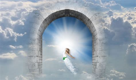 Soul Searching  New Evidence Of Life After Death
