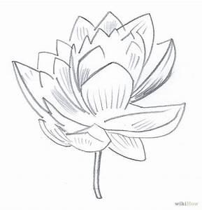 Different Kinds Of Flowers To Draw   www.pixshark.com ...