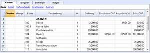 Einnahmen Ausgaben Rechnung : familie mit budget einnahmen ausgaben rechnung banana accounting software ~ Themetempest.com Abrechnung