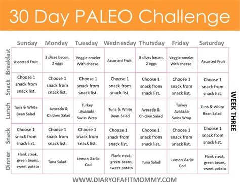17 best images about paleo diet 30 day challenge grocery