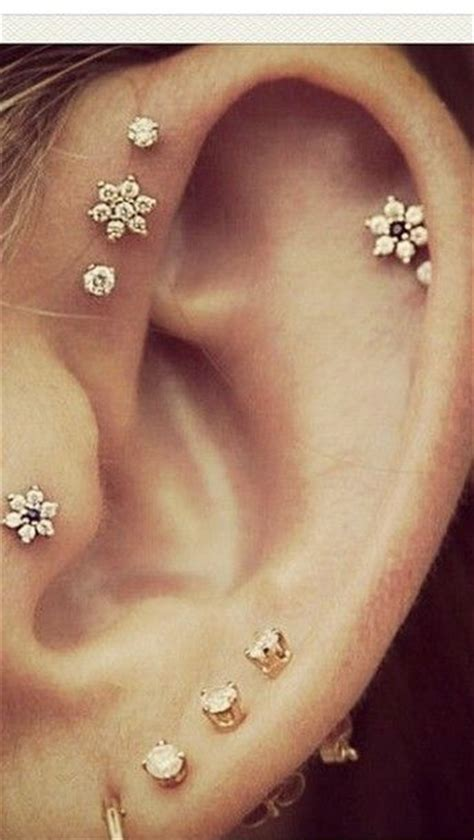 cute ear piercings tragus  helix helix lobe
