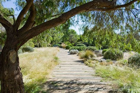 australian coastal garden design fiona brockhoff design 187 open gardens