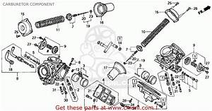 Big Image Of Carburetor Component Schematic