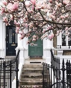 Baum Vorgarten Immergrün : magnolie bringt etwas extravaganz in den garten fresh ~ Michelbontemps.com Haus und Dekorationen