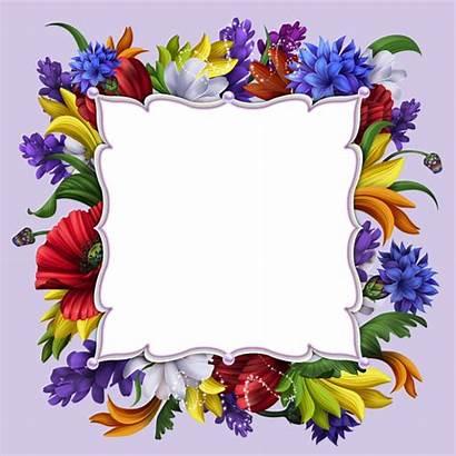 Frame Transparent Floral Flower Purple Frames Clipart