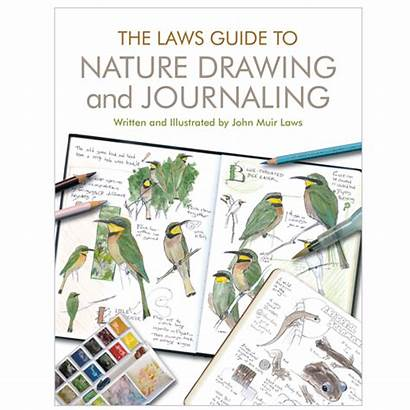 Nature Drawing Journaling Guide Laws Books Study