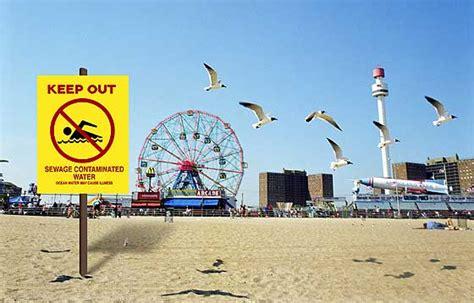 The City's Beaches Getting Excrementally Worse New York Magazine