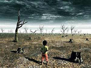 Acid Rain Facts  The Effects Of Chemicals On The Environment