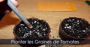 Planter Des Graines De Tomates : graines de tomates plantation de semences en pots l ~ Dailycaller-alerts.com Idées de Décoration