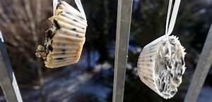 Machen Sonnenblumenkerne Fett : die besten 25 vogelfutter selber machen ideen auf ~ Lizthompson.info Haus und Dekorationen