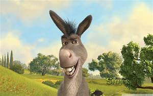 Shrek Donkey Quotes - wallpaper.