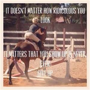 1000+ images about Great Horse Quotes (Group Board) on ...