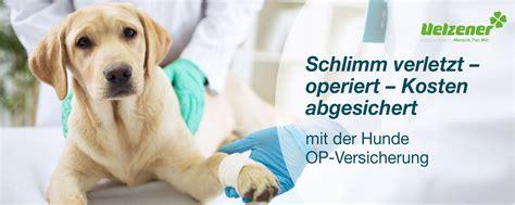 uelzener op versicherung hund wartezeit versicherung