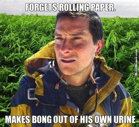 Bear Gryls Meme - bear grylls forgot paper make bong out urine weed memes