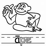 Clipart Ape Boardwalk Hail Template Coloring Clipartmag sketch template
