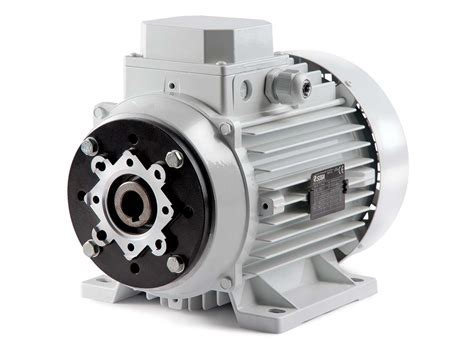 motors hollow shaft asynchronous  phase