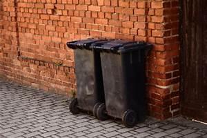 Maden Im Müll : so k nnen sie maden in der m lltonne mit kalk bek mpfen ~ Markanthonyermac.com Haus und Dekorationen
