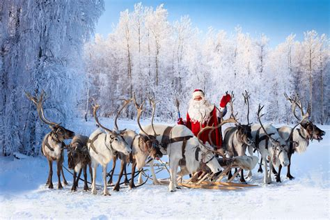 How did Santa's reindeer get their names? - OxfordWords blog