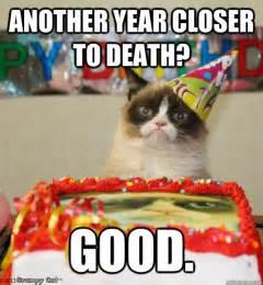 grumpy cat birthday another year closer to grumpy cat birthday